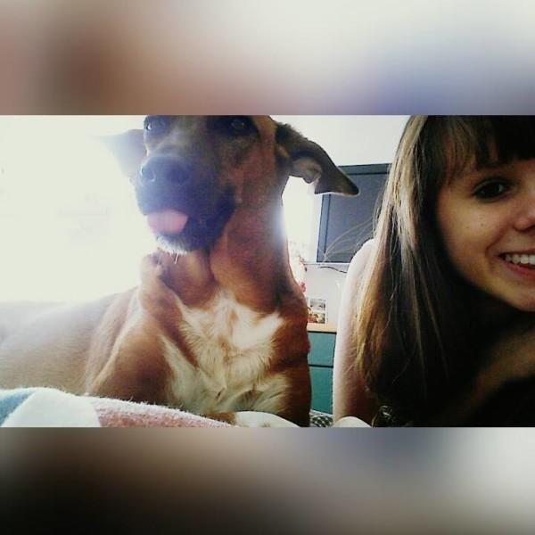 video call dog and girl