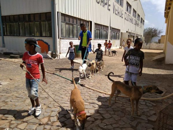 simabo educates school kids to care about animals